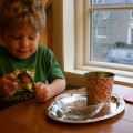 Thumbnail image for Montessori Christmas: Sensory Books & Cracking Nuts {day 6}