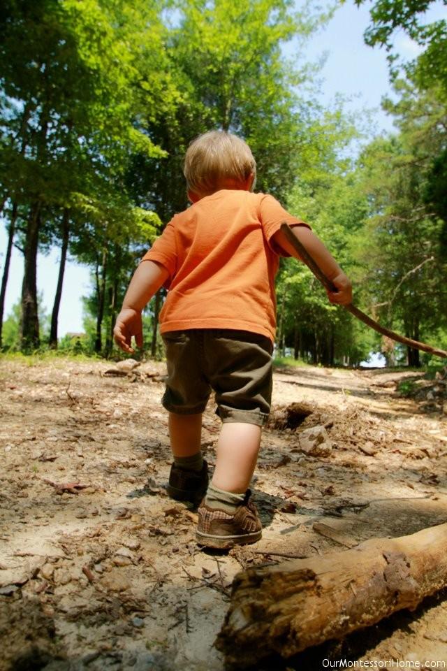 7 nature walks to take with kids