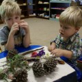 Examining Items from Our Nature Walk