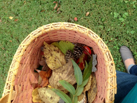 A Nature Walk for Fall - Gathering basket