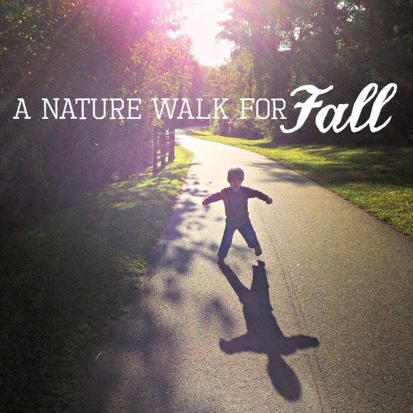 Nature Walk Ideas for Fall