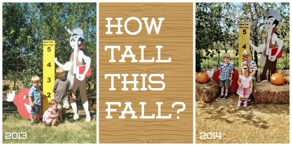 10 Activities to Welcome Fall - How Tall This Fall? Take a yearly picture at your local apple orchard.
