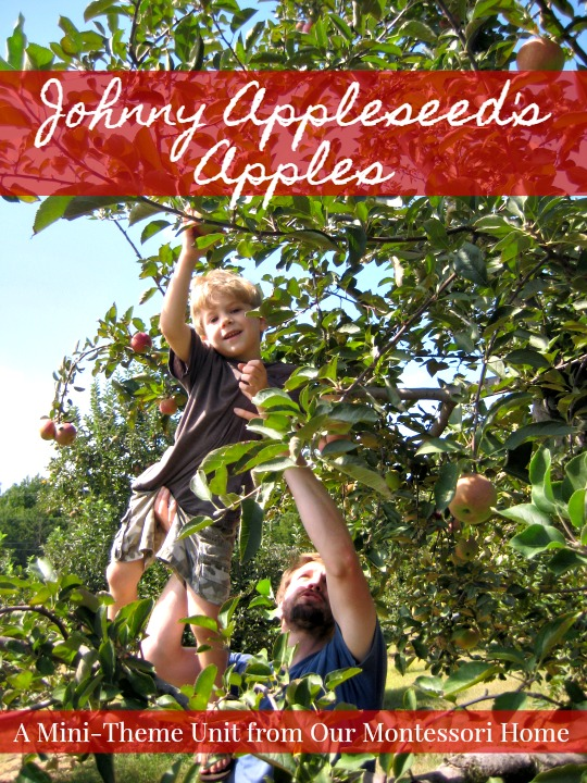 Montessori Apple Themed Activities - Johnny Appleseed's Apples Theme Unit & Lesson Plans