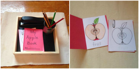 Montessori Apple Themed Activities - Parts of an Apple Book