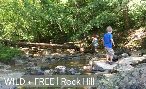 W+F Rock Hill